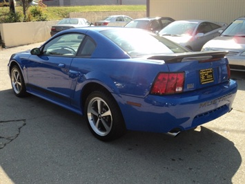 2003 ford mustang mach 1 premium for sale in cincinnati oh stock 10824. Black Bedroom Furniture Sets. Home Design Ideas