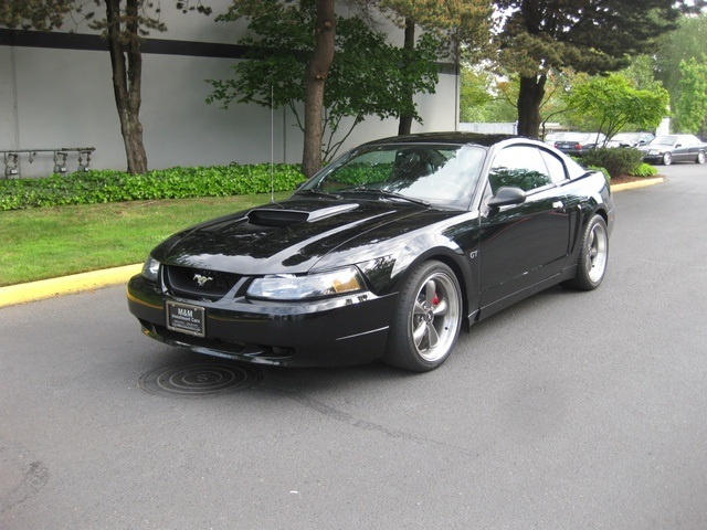 2001 ford mustang bullitt gt 5 spd 32k miles. Black Bedroom Furniture Sets. Home Design Ideas