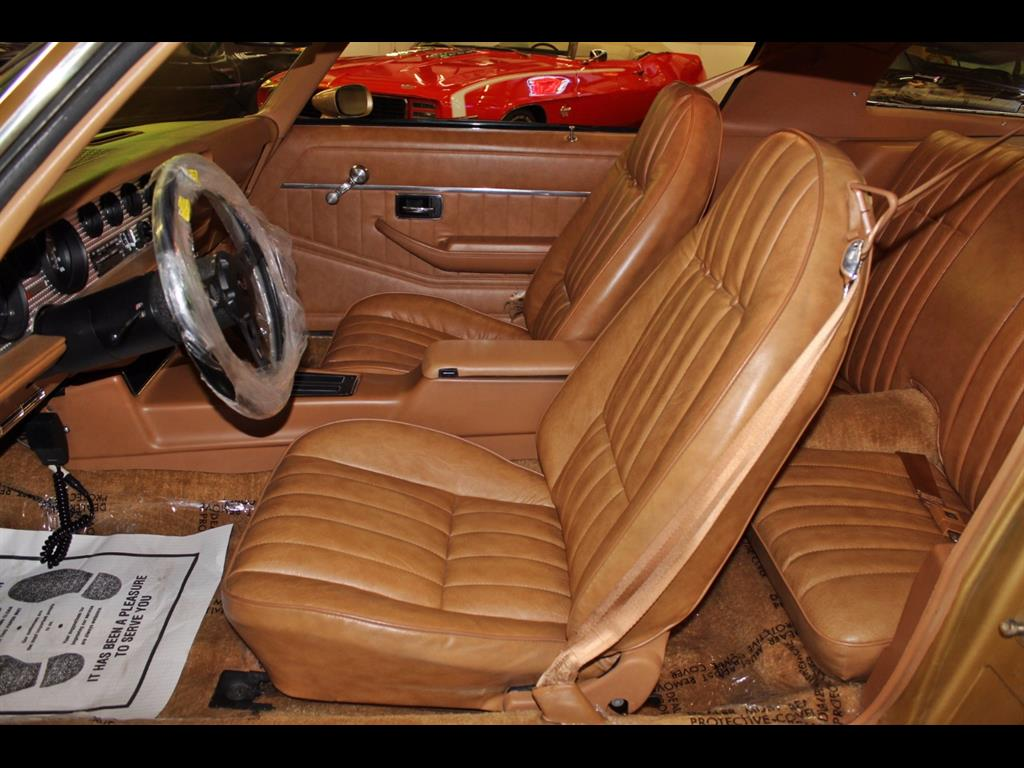1978 Pontiac Trans Am W-72 - Photo 13 - , TX 77041