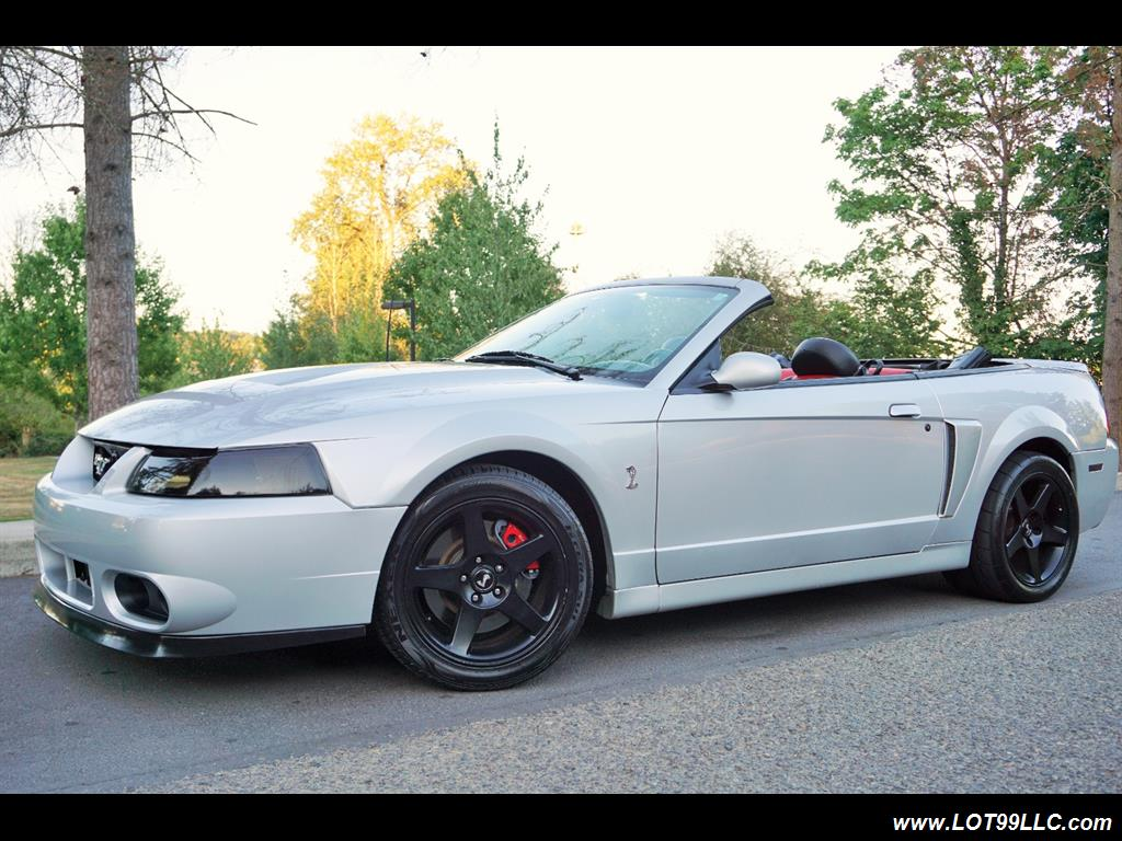 2003 Ford Mustang SVT Cobra 31K  10TH ANNIVERSARY - Photo 2 - Milwaukie, OR 97267