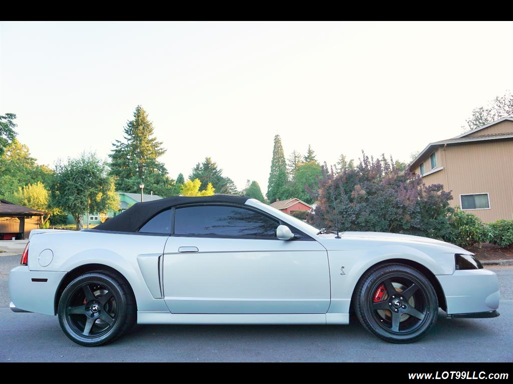 2003 Ford Mustang SVT Cobra 31K  10TH ANNIVERSARY - Photo 5 - Milwaukie, OR 97267