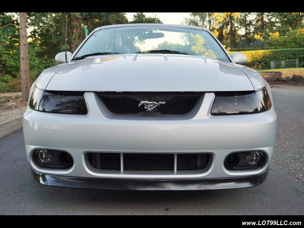 2003 Ford Mustang SVT Cobra 31K  10TH ANNIVERSARY - Photo 3 - Milwaukie, OR 97267