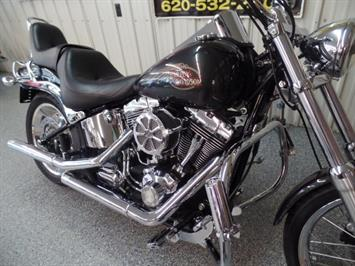 2008 Harley-Davidson Softail Custom - Photo 8 - Kingman, KS 67068