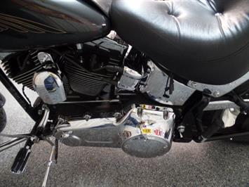 2008 Harley-Davidson Softail Custom - Photo 14 - Kingman, KS 67068