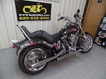 2008 Harley-Davidson Softail Custom - Photo 3 - Kingman, KS 67068