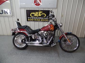 2007 Harley-Davidson Softail Custom - Photo 1 - Kingman, KS 67068