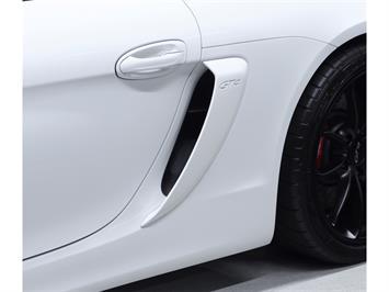 2016 Porsche Cayman GT4 - Photo 52 - Nashville, TN 37217